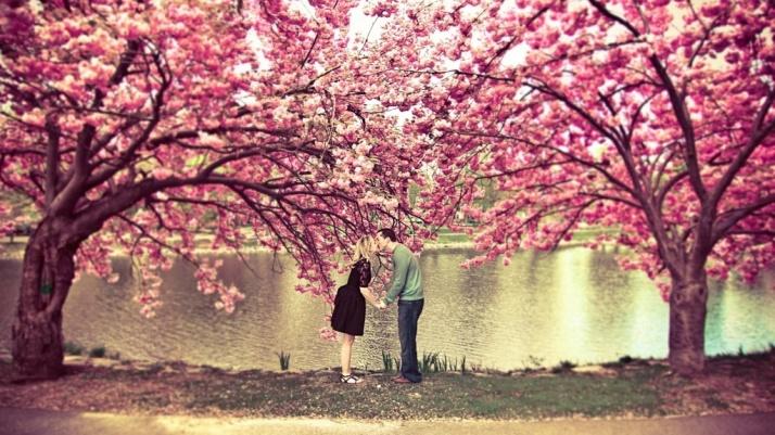 spring-blossom-love-kiss-1024x576