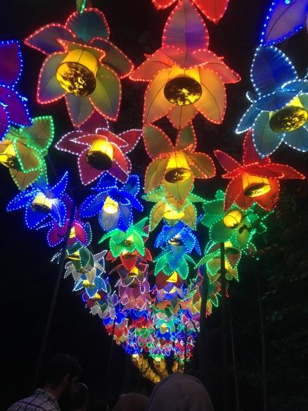 china-lights-11-5-16-jpg-6